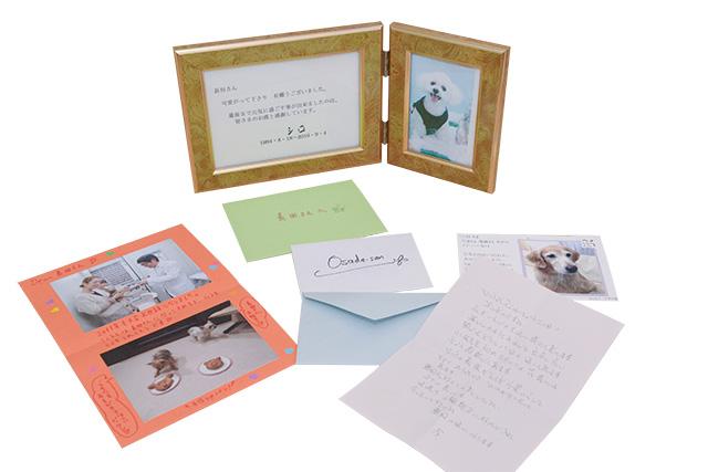 飼い主さんから頂いた、手紙や写真は大切な宝物です。