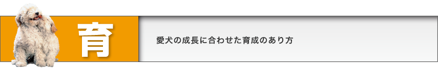 title_iku